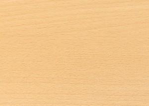 immagine legno faggio